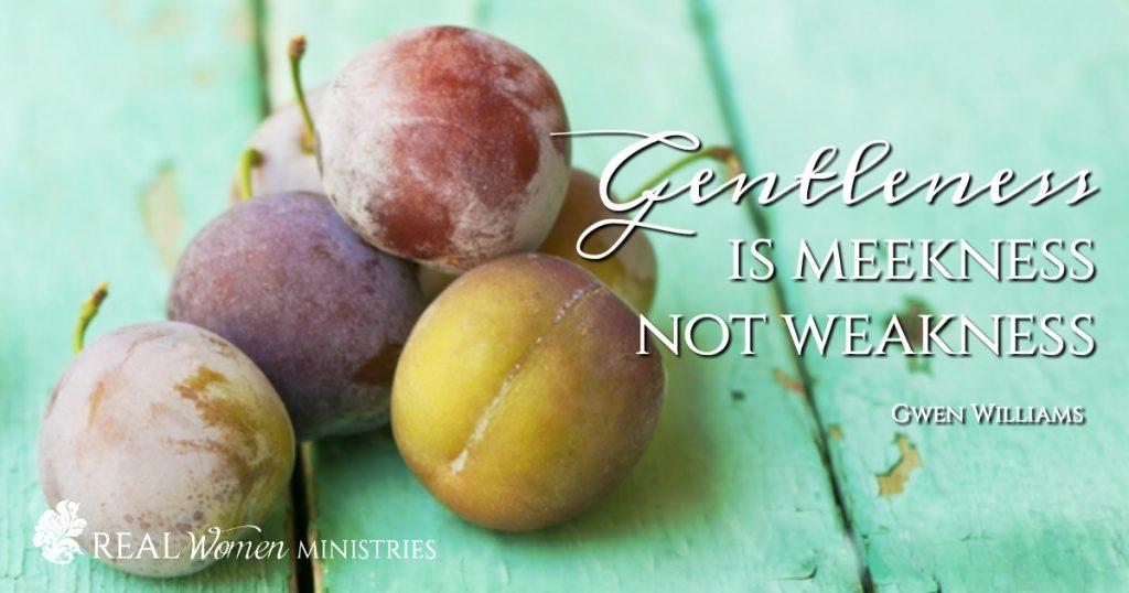 Gentleness is not weakness